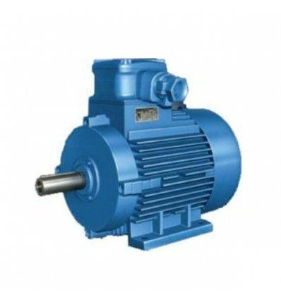 Elektromotor - AOM 180L04-522  22kW SNV2